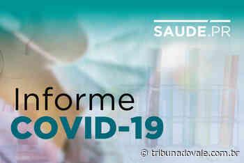 Com novos casos Jacarezinho chega a 179 diagnósticos de Covid-19 - Tribuna do Vale