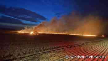 No injuries after truck fire in Wallaceburg wheat field - CTV News Windsor