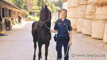 Fohlen erlebt Autobahn-Abenteuer und darf sich bei Polizistin erholen - Merkur.de