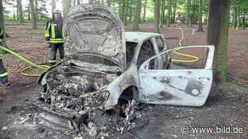 Düsseldorf/Langenfeld: Gestohlenes Auto im Wald abgefackelt - BILD