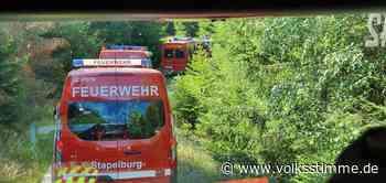 Wanderer verhindert Waldbrand im Harz - Volksstimme