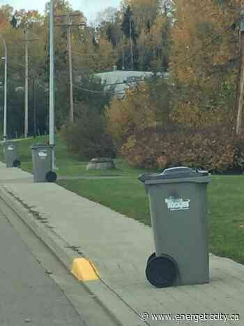 Bear resistant garbage bins roll out in Fort Nelson - Energeticcity.ca
