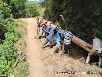 Minga ayudó a reconstruir puente en Baraya - Diario del Huila