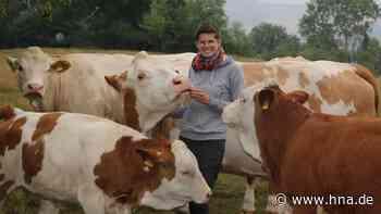 Linda Mikosch aus Rotenburg nimmt mit ihren Tieren an Rinderschauen teil - HNA.de