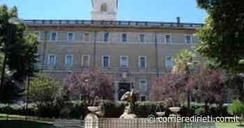 Monterotondo, task force di tecnici in Comune per la scuola - Corriere di Rieti