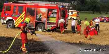 Flächenbrand auf Feld in Metzingen (D) - Nau.ch
