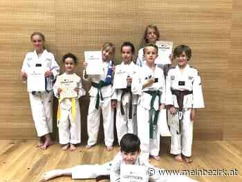 Taekwondo Verein St. Johann: Alle Prüflinge bestanden die Gürtelprüfung. - meinbezirk.at