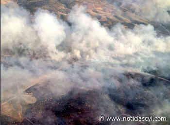 El incendido intencionado de Villavieja arrasa 1,64 hectáreas y está controlado - Noticiascyl