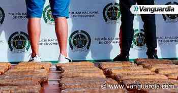 Hallaron 60 kilos de marihuana en una tienda de Piedecuesta - Vanguardia