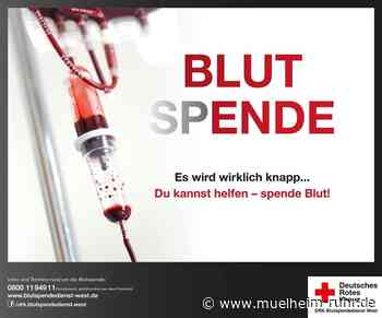 DRK ruft erneut zu Blutspenden auf