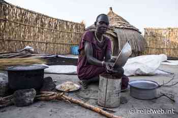 South Sudan violence threatens over 60000 people in Bor and Pibor with hunger - South Sudan - ReliefWeb