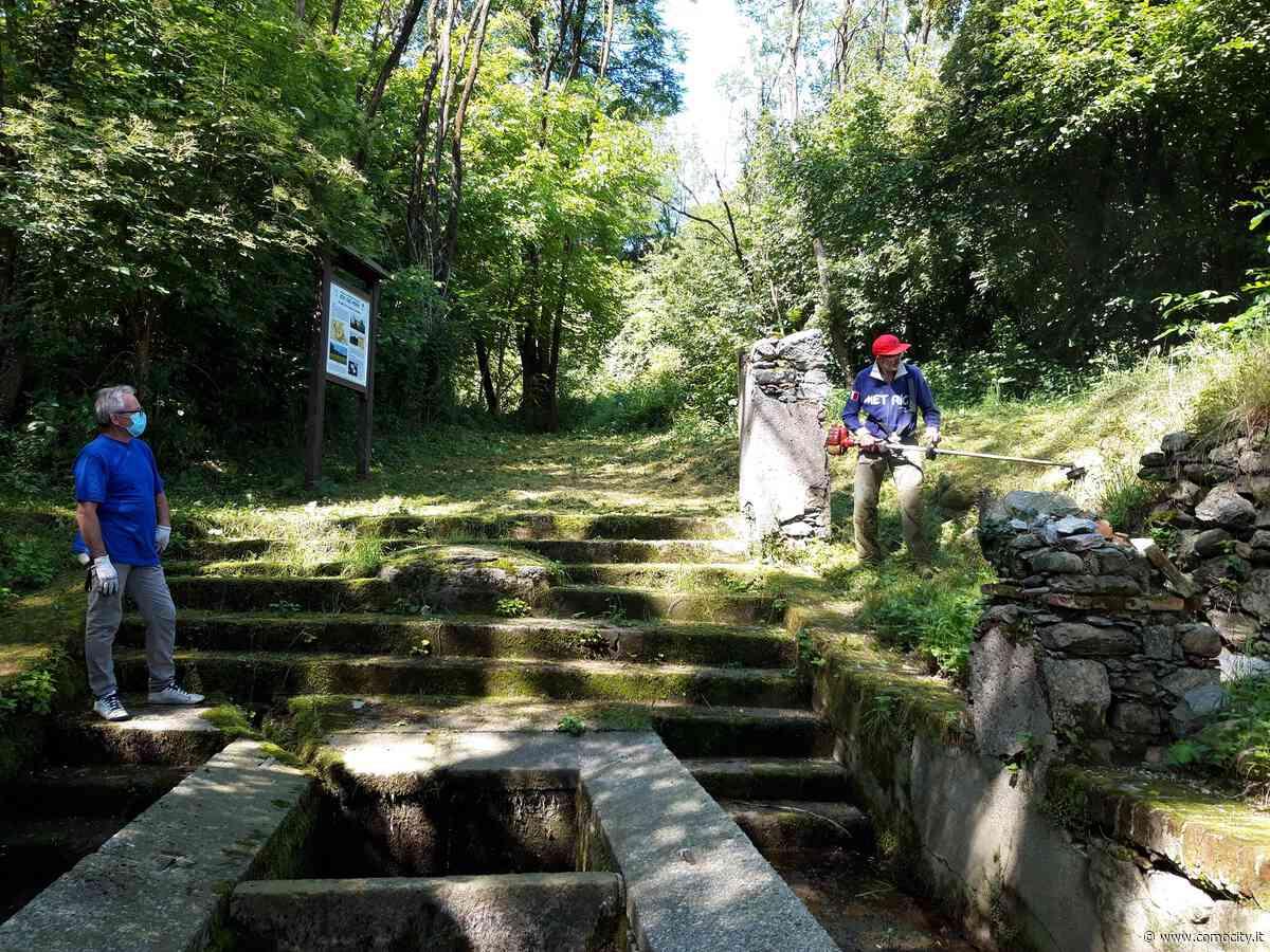 """Alzate Brianza: pulizie d'estate nelle aree dello """"Zoc del Peric"""" con i volontari del Circolo Alpi - Como e Lago di Como - ComoCity"""