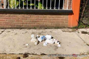 Denuncian que recolectores dejan tirada basura en calles de Coatepec; vecinos tuvieron que recoger pañales y papel sanitario - Libertadbajopalabra.com