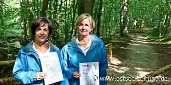 Heilwald in Bad Doberan: Waldtherapeuten warten auf Projektstart - Ostsee Zeitung