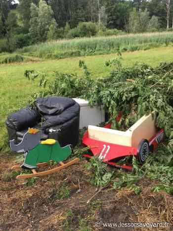 (PHOTOS) Bons-en-Chablais : des déchets sauvages s'accumulent à côté d'une zone protégée - lessorsavoyard.fr