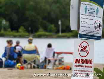 Lakefield, Omemee beaches posted as unsafe for swimming - ThePeterboroughExaminer.com