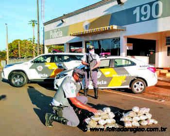 Casal é detido com 7kg de supermaconha na Rondon - Folha da Região