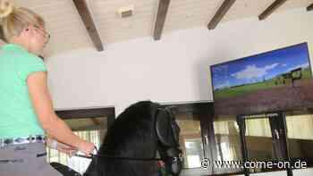 Besonderes Training in Balve-Wocklum: Reiten auf dem Simulator - come-on.de