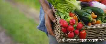 Leimen: Bürger können Obst pflücken - Regenbogen