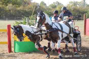 Équitation - Concours de reprise à Lignières/La Celle-Condé - Le Berry Républicain