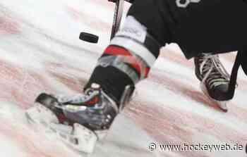 Eispiraten Crimmitschau verpflichten Kelly SummersVerteidiger spielte für die Binghamton Devils - Hockeyweb.de