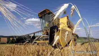 Wolfhager Land: Landwirte kämpfen mit Ertragseinbußen durch Trockenheit und Nachtfröste - HNA.de