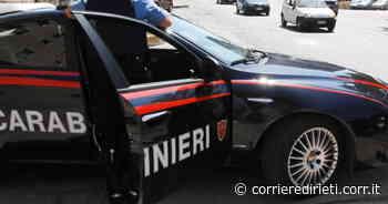 Coltivavano marijuana nell'orto insieme ai pomodori. Arrestati due sessantenni di Monterotondo - Corriere di Rieti