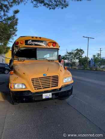 Estrella conductor su camión contra domicilio en la colonia Bellavista - voz en red