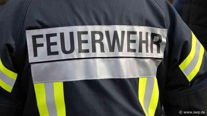 Abscheider einer Firma in Sigmaringen funktioniert nicht: Ölteppich auf der Donau - SWP