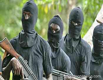 Gunmen abduct Police Inspector, LGA Councillor, 3 Princes in Adamawa - NIGERIAN TRIBUNE