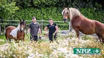 Isselburg: Das tierische Leben auf dem Eichenhof in Werth - NRZ