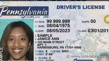 Un tercer género aparecerá en documentos de identificación en Pensilvania - Univision