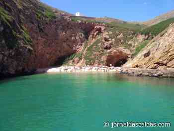 Interdita permanência no areal da praia na Berlenga - Jornal das Caldas