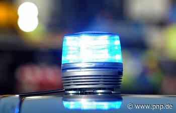20-Jähriger schießt mit Softair-Gewehr auf Tauben - Stockstadt am Main - Passauer Neue Presse