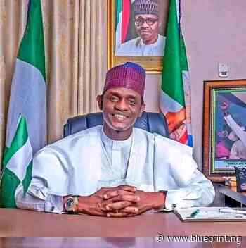 Buni donates cows, rams to Yobe correctional centres - Blueprint newspapers Limited