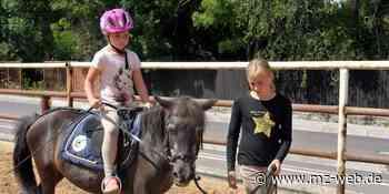 20 Kinder haben Ferienspaß im Zeltlager auf Reiterhof Aderstedt bei Bernburg: Reiten und Pferde-Model-Wettbewerb - Mitteldeutsche Zeitung