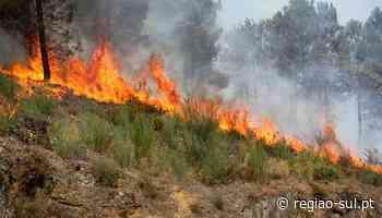 Incêndios em Tavira e Portimão em fase de conclusão - Região Sul