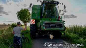 Wegen Mähdreschern: Autofahrer riskieren Unfälle während der Ernte-Zeit in Werl - Soester Anzeiger