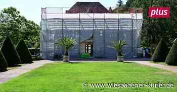 Die Orangerie von Kloster Eberbach wird saniert - Wiesbadener Kurier
