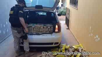 Morador de Umuarama é detido transportando mais de 300 kg de maconha - ® Portal da Cidade   Umuarama