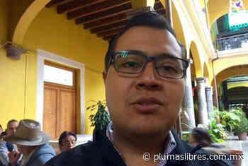 Terrenos boscosos de la sierra alta de Coatepec tienen propietarios y no son de campesinos: alcalde - plumas libres