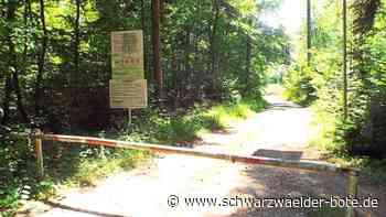 Geislingen: Container scheitert an Disziplin - Geislingen - Schwarzwälder Bote