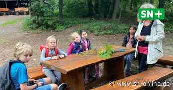 Stadthagen: 135 Kinder melden sich für Ferienspaß-Aktionen an - Schaumburger Nachrichten