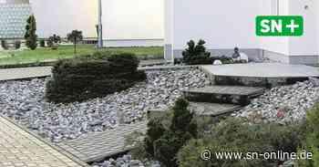 Stadthagen: Nabu und Stadt wollen gegen Steingärten vorgehen - Schaumburger Nachrichten