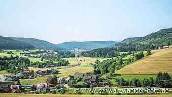 Baiersbronn: Gemeinde plant Flächenstrategie - Baiersbronn - Schwarzwälder Bote