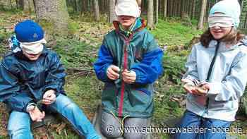 Baiersbronn: Kinder sollen Nationalpark online kennenlernen - Baiersbronn - Schwarzwälder Bote
