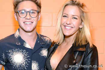 Is Niall Horan dating Amelia Woolley? Girlfriend list and who else he's dated - The Sun
