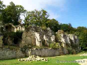 Visite des vestiges de Verneuil-en-Halatte samedi 17 octobre 2020 - Unidivers