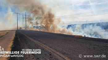 Schmittweiler Kreis Kusel Brand Getreidefeld Feuer Feuerwehr gelöscht Großeinsatz Trockenheit | Kaiserslautern | SWR Aktuell Rheinland-Pfalz | SWR Aktuell - SWR