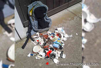 Broken teapots removed from Teapot Hill by concerned Chilliwack hiker - Chilliwack Progress